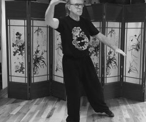 Tai Chi Immersion this Summer at Eastover and the Open Center